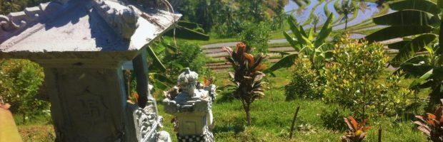 Spirituele reizen Bali 2020